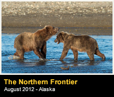 The Northern Frontier
