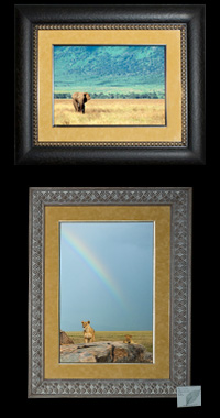 High Quality Framed Prints